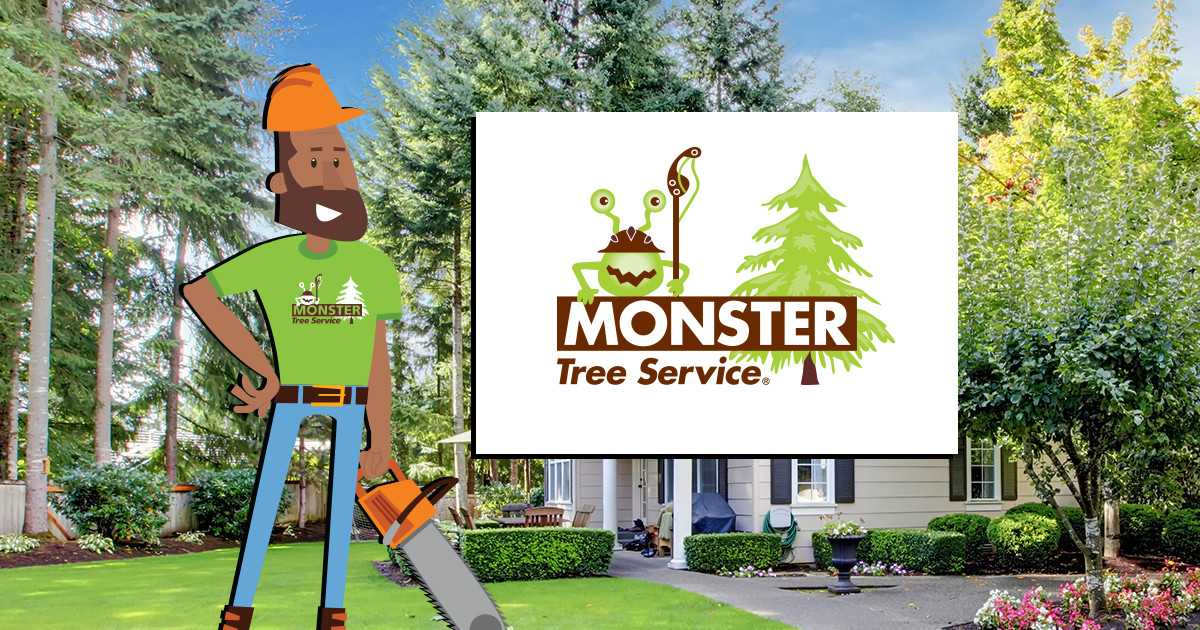 Local Tree Services Certified Arborists