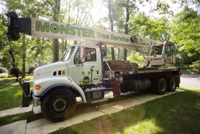 Crane Services | Tree Removal & Replacement