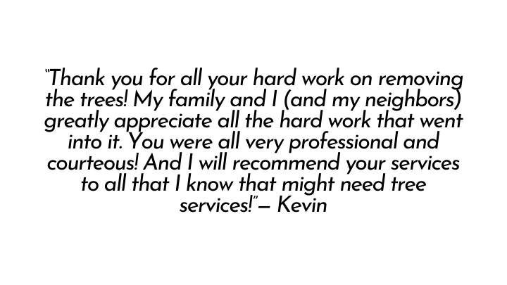 """Thank you for all your hard work on removing the trees! My family and I (and my neighbors) greatly appreciate all the hard work that went into it. You were all very professional and courteous! And I will recommend your services to all that I know that might need tree services!"" Kevin"